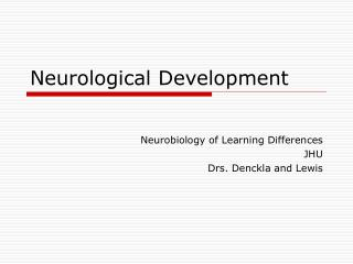 Neurological Development