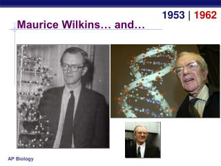 Maurice Wilkins… and…
