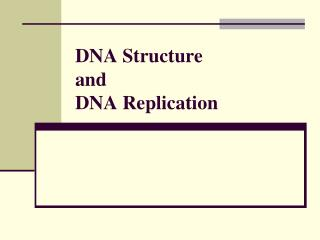 DNA Structure and DNA Replication