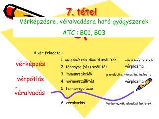 7. tétel