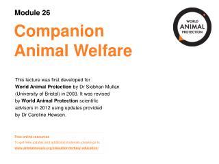 Companion  Animal Welfare