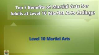 ppt-40687-Top-5-Benefits-of-Martial-Arts-for-Adults-at-Des-Plaines-Martial-Arts