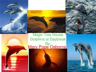 Magic Tree House  Dolphins at Daybreak By :