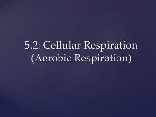 5.2: Cellular Respiration (Aerobic Respiration)