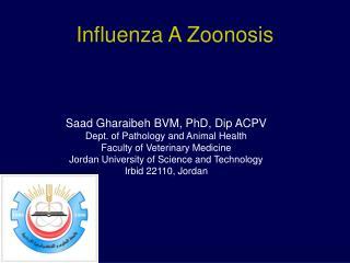Influenza A Zoonosis