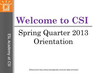 Welcome to CSI