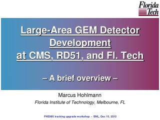 Large-Area GEM Detector Development  at  CMS, RD51, and Fl. Tech – A brief overview –