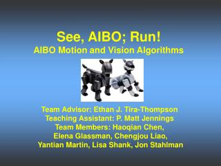 See, AIBO; Run! AIBO Motion and Vision Algorithms