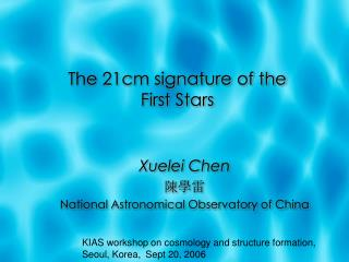 The 21cm signature of the  First Stars