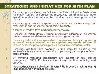 STRATEGIES AND INITIATIVES FOR XIITH PLAN