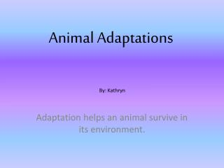 Animal Adaptations