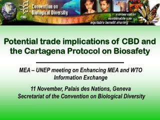 Potential trade implications of CBD and the Cartagena Protocol on Biosafety