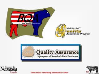 Quality Assurance Programs (QA)