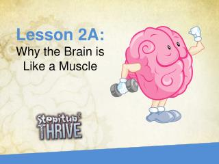 Lesson  2A :  Why the Brain is Like a Muscle