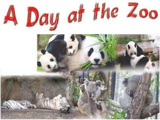 They are going to the  zoo .