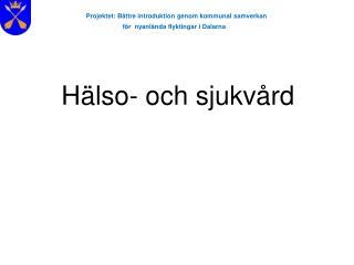 Projektet: B ttre introduktion genom kommunal samverkan  f r  nyanl nda flyktingar i Dalarna