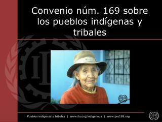 Convenio núm. 169 sobre los pueblos indígenas y tribales