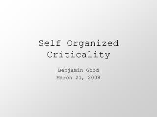 Self Organized Criticality