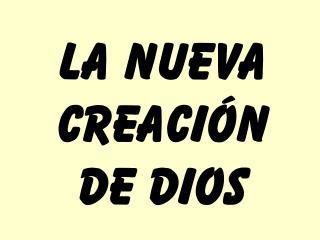LA NUEVA CREACI N DE DIOS