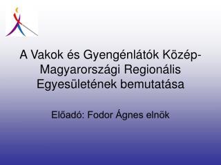 A Vakok és Gyengénlátók Közép-Magyarországi Regionális Egyesületének bemutatása