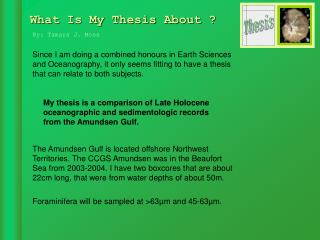 What Is My Thesis About ?