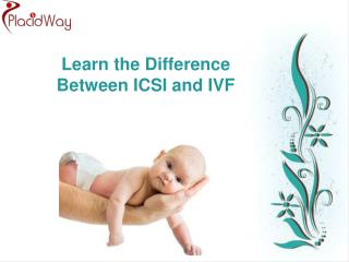 Learn the Difference Between ICSI and IVF