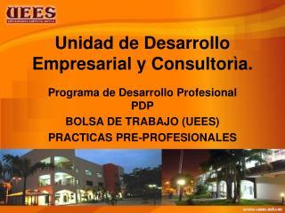 Unidad de Desarrollo Empresarial y Consultorìa.