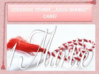 """COLEGIUL TEHNIC ,,IULIU MANIU""""  CAREI"""
