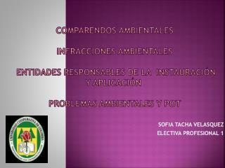SOFIA TACHA VELASQUEZ  ELECTIVA PROFESIONAL 1