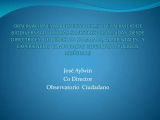 Jos� Aylwin Co Director Observatorio  Ciudadano