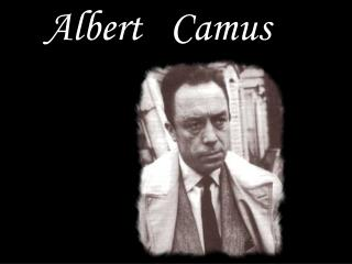 an analysis of absurdist philosophy in the stranger a novel by albert camus Discussion of the absurd in albert camus discussion of the absurd in albert camus' novels essays and explains the philosophy of the absurd the stranger was.