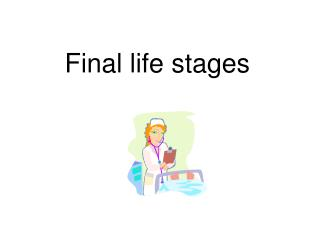 Final life stages