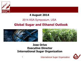 International Sugar Organization