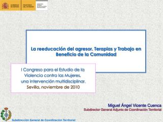 Miguel Ángel Vicente Cuenca Subdirector General Adjunto de Coordinación Territorial