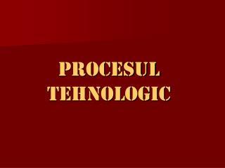 PROCESUL TEHNOLOGIC