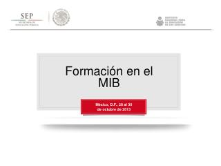 Formación en el MIB