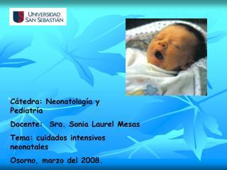 Cátedra: Neonatología y                   Pediatría Docente:  Sra. Sonia Laurel Mesas