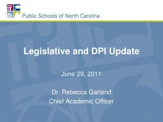 Legislative and DPI Update