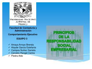 PRINCIPIOS  DE LA  RESPONSABILIDAD  SOCIAL EMPRESARIAL