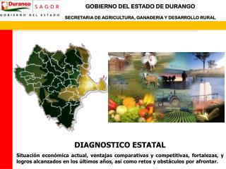 DIAGNOSTICO ESTATAL