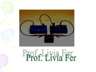 Prof. Livia Fer