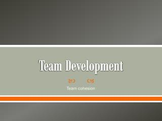 Team Development