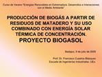 Curso de Verano  Energ as Renovables en Extremadura. Desarrollos e Interacciones con el Medio Ambiente   PRODUCCI N DE B