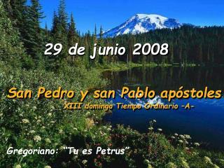 29 de junio 2008