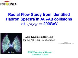 Radial Flow Study from Identified Hadron Spectra in Au+Au collisions  at                 200GeV