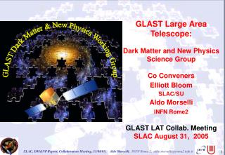 GLAST Large Area Telescope: Dark Matter and New Physics Science Group Co Conveners  Elliott Bloom