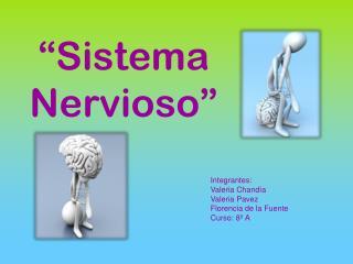 """""""Sistema Nervioso"""""""