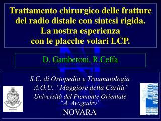 Trattamento chirurgico delle fratture del radio distale con sintesi rigida. La nostra esperienza