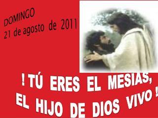 DOMINGO    21 de agosto  de  2011 ! TÚ  ERES  EL  MESÍAS,   EL  HIJO  DE  DIOS  VIVO !
