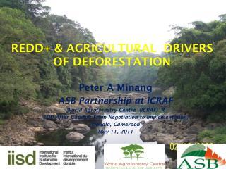 REDD+ & AGRICULTURAL  DRIVERS OF DEFORESTATION
